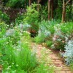 石原和幸(庭園デザイナー)の生い立ちと評判は?年収や作品を調査!