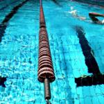 ロンハー水泳2018の結果!岸明日香や稲村亜美の水着がすごい画像を調査!